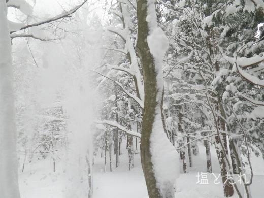 IMGP1112_20170124_27_雪山修行