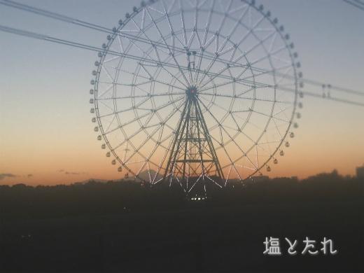 DSC_0507_20170202_01_葛西臨海公園より富士山
