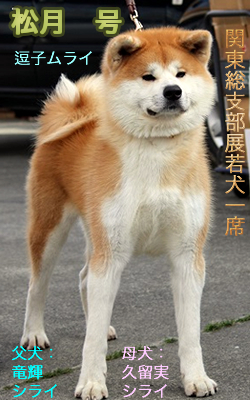 shougetsu2.jpg