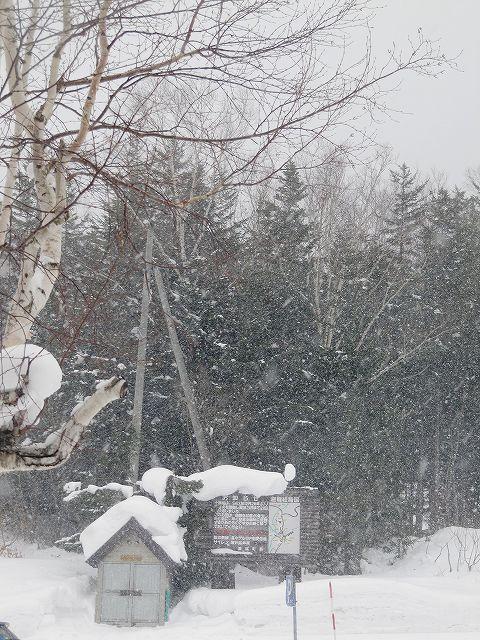 s-雪と風、、、