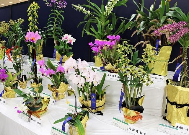 入賞花コーナー