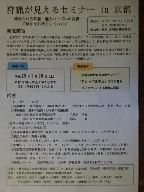 DSC07534.jpg