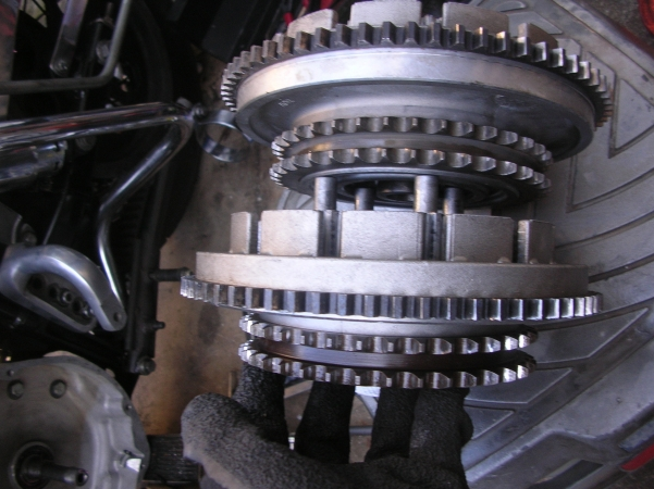 DSCN7128.jpg