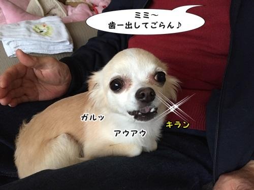 IMG_6263.jpg