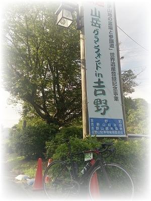 20161229yoshino.jpg
