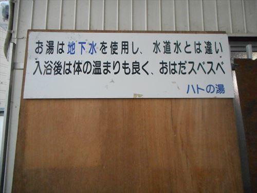 DSCN3025_R.jpg