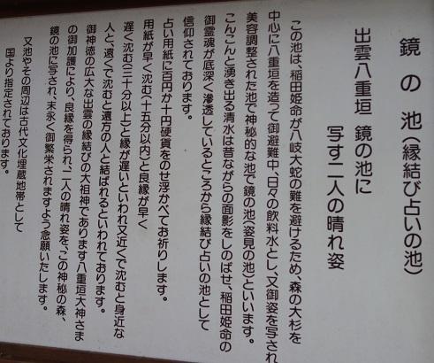 DSC07502.jpg