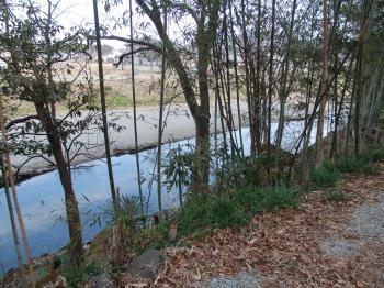 槻川散策2