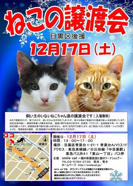 20161217_s - コピー
