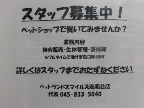 s-17-1-11-3.jpg
