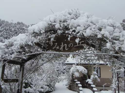 20170201 雪①