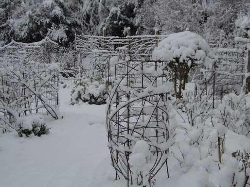 20170201 雪3