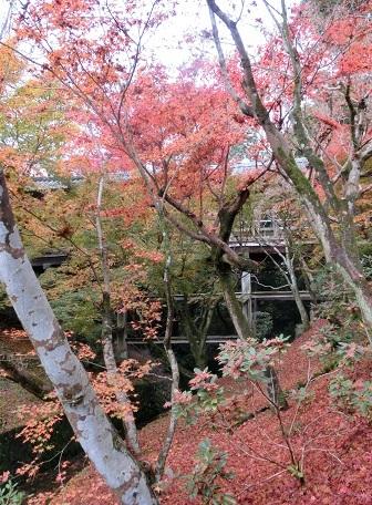 東福寺16