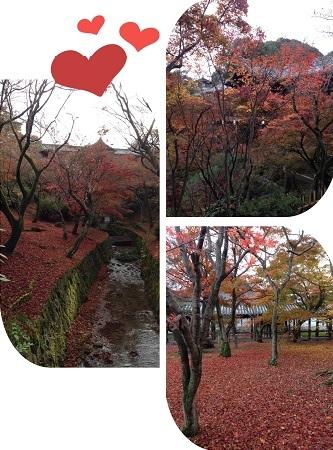 東福寺最後