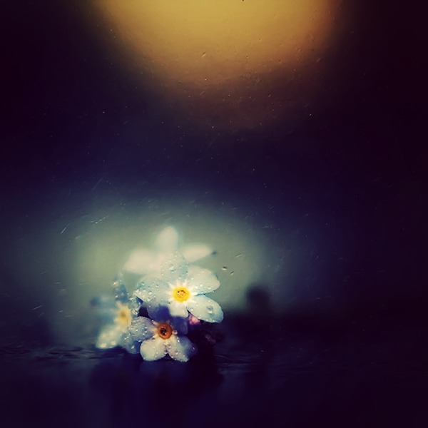 11rain_by_healzo-da7xn0v.jpg