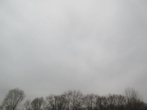 16.12.05.つれづれ