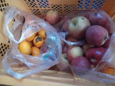 12.15リンゴと柿