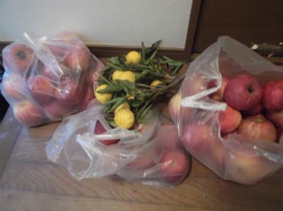 12.15リンゴと柚子