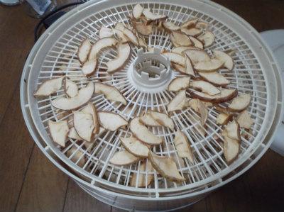 12.23リンゴチップ製造