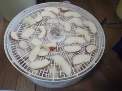 1.3リンゴチップスづくり
