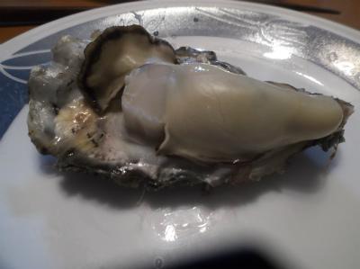 1.19牡蠣4
