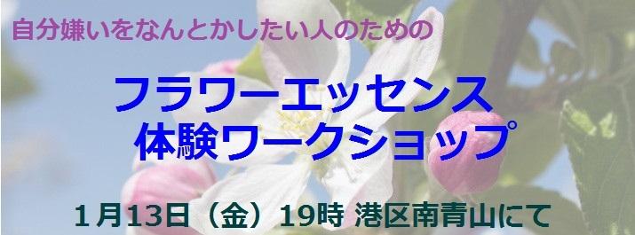 0113_apple flower01_001