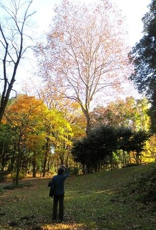 IMG_9365群馬の森