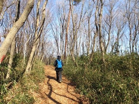 IMG_9560冬の雑木林