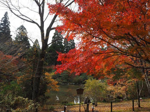 higashiyama20161120-1_convert_20161125202838.jpg