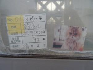S_DSC00464.jpg