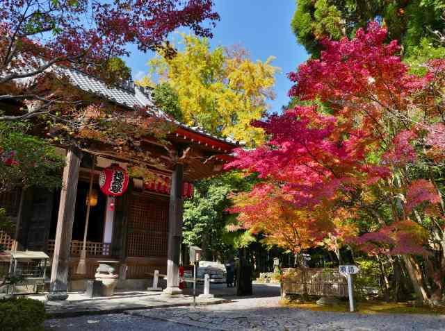 赤山禅院7