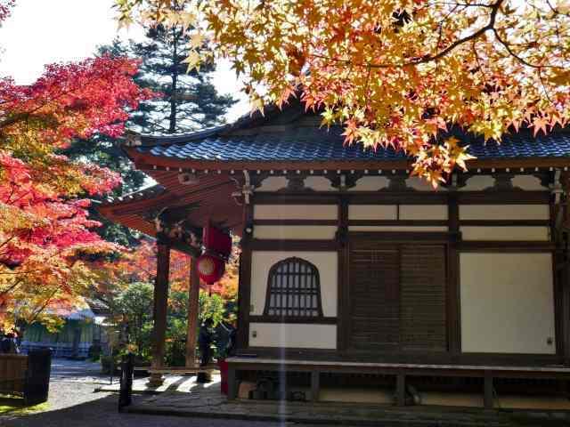 赤山禅院8