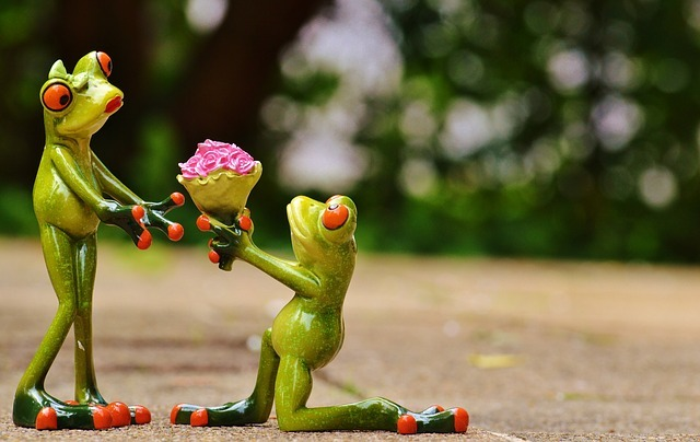 カエルのプロポーズ