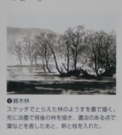 DSCN0428 (1024x768) - コピー - コピー
