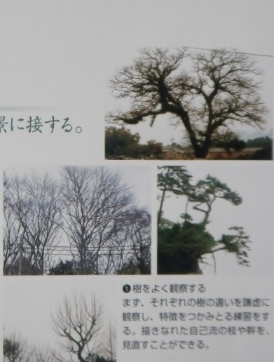 DSCN0433 (1024x768) - コピー
