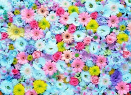 花束もなければ