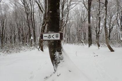 20161210大日ヶ岳04