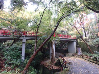 20161119京都一周トレイル06