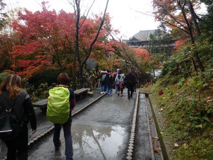 20161119京都一周トレイル08