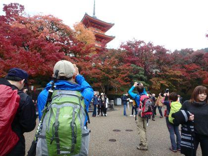 20161119京都一周トレイル09