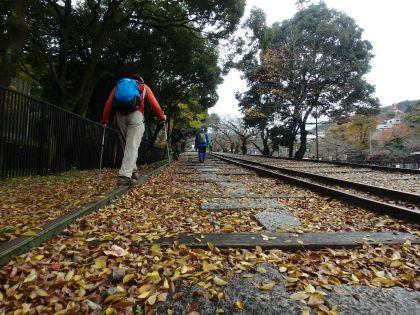 20161119京都一周トレイル14