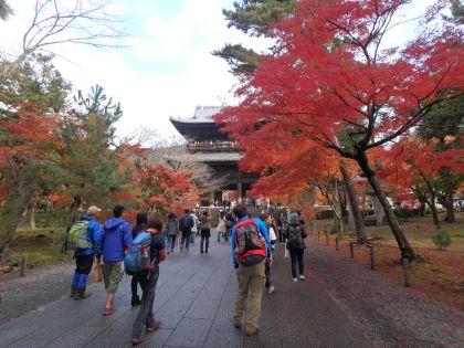 20161119京都一周トレイル17