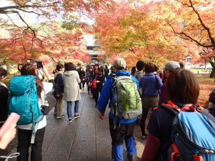 20161119京都一周トレイル19