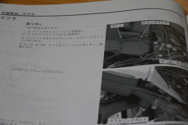 P1300634.jpg