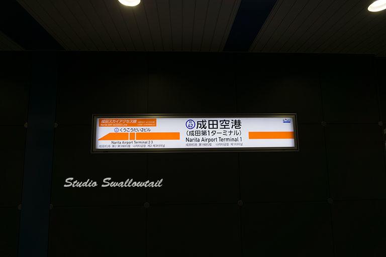 DSC09143.jpg