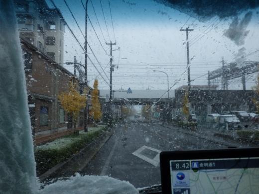 東京11月の雪 (5)