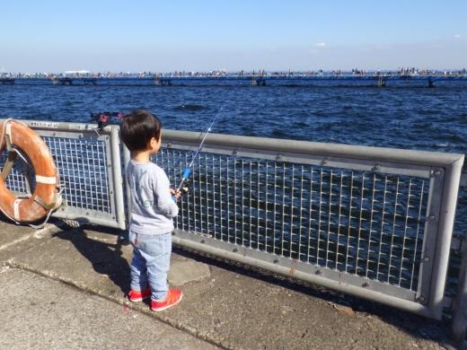 管理釣り場の柵 (3)