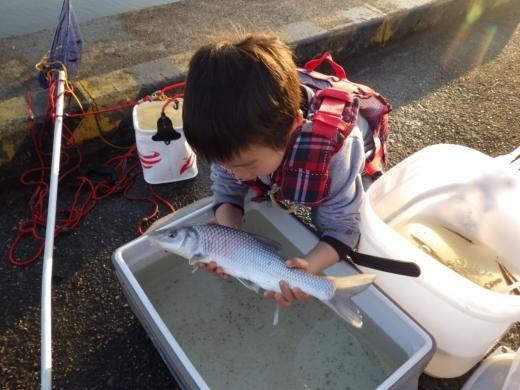 土浦港でワカサギ釣り (36)