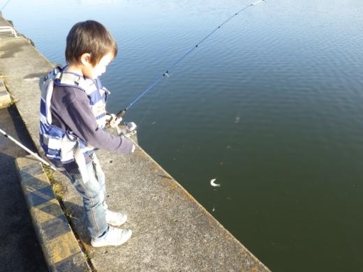 土浦港でワカサギ釣り (33)