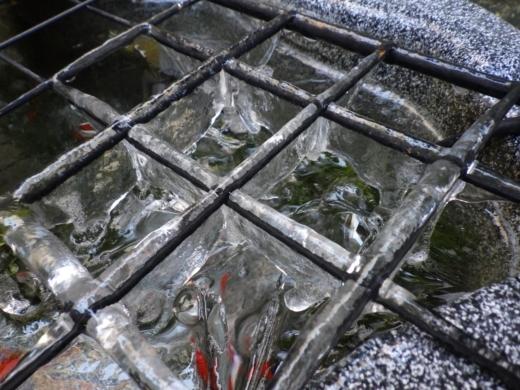 外水槽 (4)
